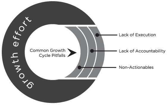 typical growth cycle